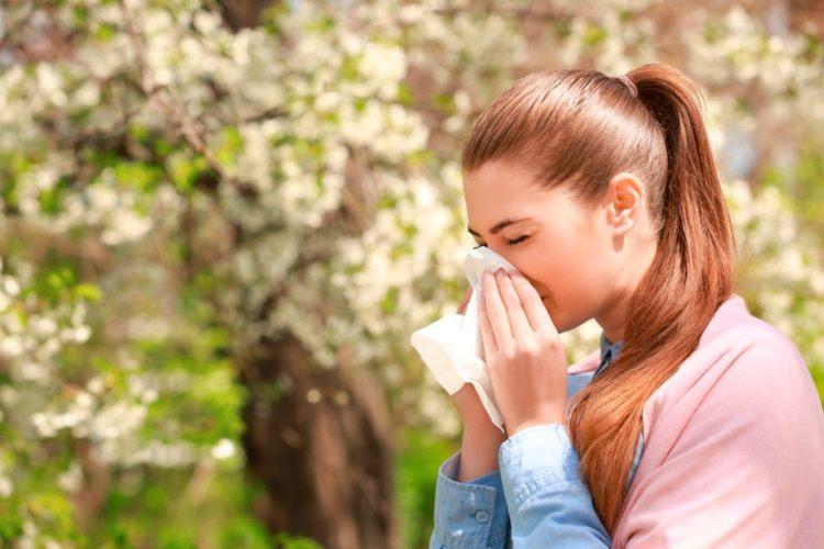 Antihistamínicos naturales para combatir la alergia en primavera