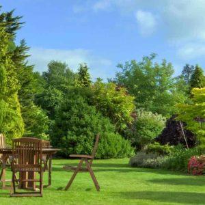 Máster en Diseño de Jardines